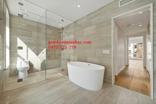 5 mẫu phòng tắm kính cường lực đẹp mắt 2015 5